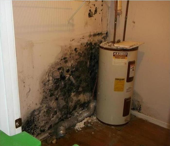 Very moldy and dirty wall behind water heater