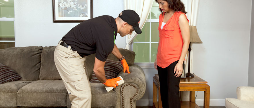 Worcester, MA carpet upholstery cleaning