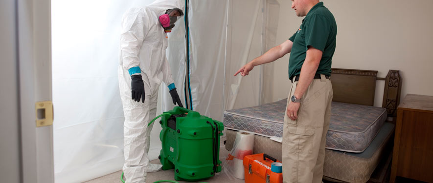 Worcester, MA mold removal process